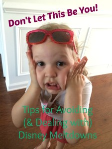 Avoiding-Disney-Meltdowns