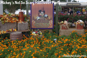 Disney Tip- If you visit Disney World in the fall, make sure to attend Mickey's Not So Scary Halloween Party in Magic Kingdom. | Disney Vacation | Disney Vacation Tips | Disney Planning Tips | Disney World Planning |