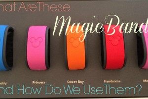 What Are These MagicBands and How Do We Use Them?