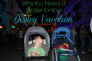 Why You Need a Stroller for Your Disney Vacation