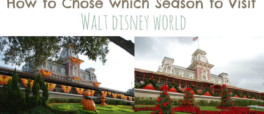 How to Chose Which Season to Visit Walt Disney World Resort