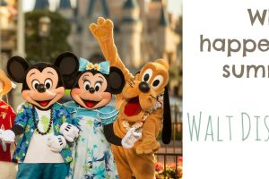 What's Happening This Summer at Walt Disney World